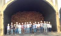 Dia de Campo na Unidade de Produção da Aperam BioEnergia - Distrito de Lagoa Grande